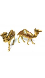 Thar Camel in Brass (Pair)
